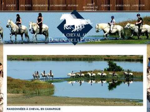 3bafbaf56c3e Aperçu   cheval, poney, âne, équitation, annuaire, équestre   Domaine de la  Palissade