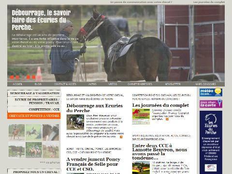 chevaux ou poneys a vendre